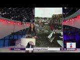 Árbol cae por Frente Frío en Yucatán y deja a personas atrapadas   Noticias con Yuriria