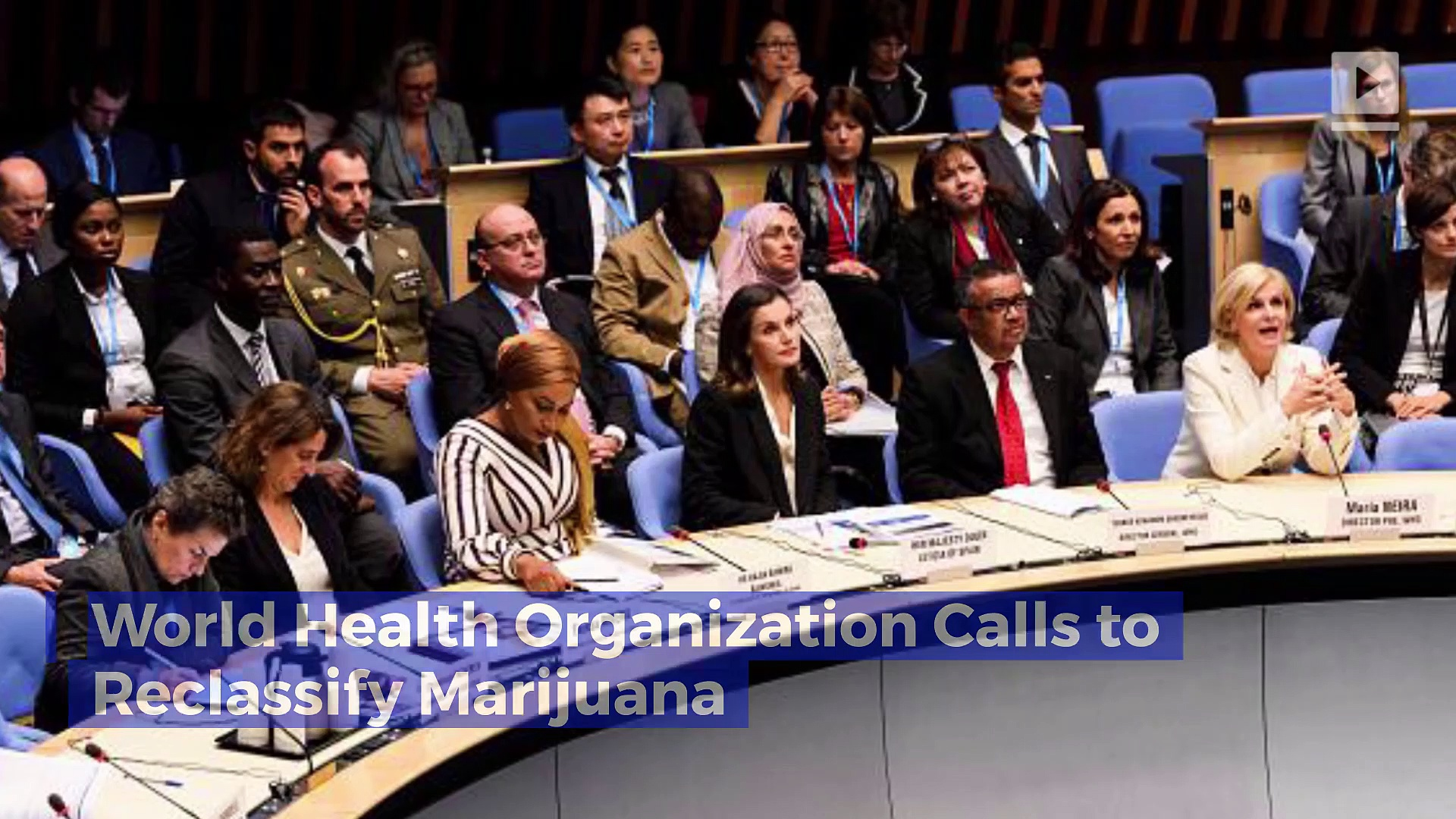 World Health Organization Calls to Reclassify Marijuana