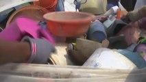 Togo, RECYCLAGE DES DÉCHETS PLASTIQUES