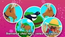 Apprendre en s'amusant - Chansons pour Maternelles - Les Patapons prt 1/2