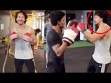 Tiger Shroff's Amazing BOXING Training Video   Baaghi 2   Tiger Shroff Stunt   Tiger Shroff Fight