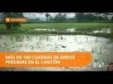 Invierno afecta más de dos mil hectáreas de cultivos - Teleamazonas