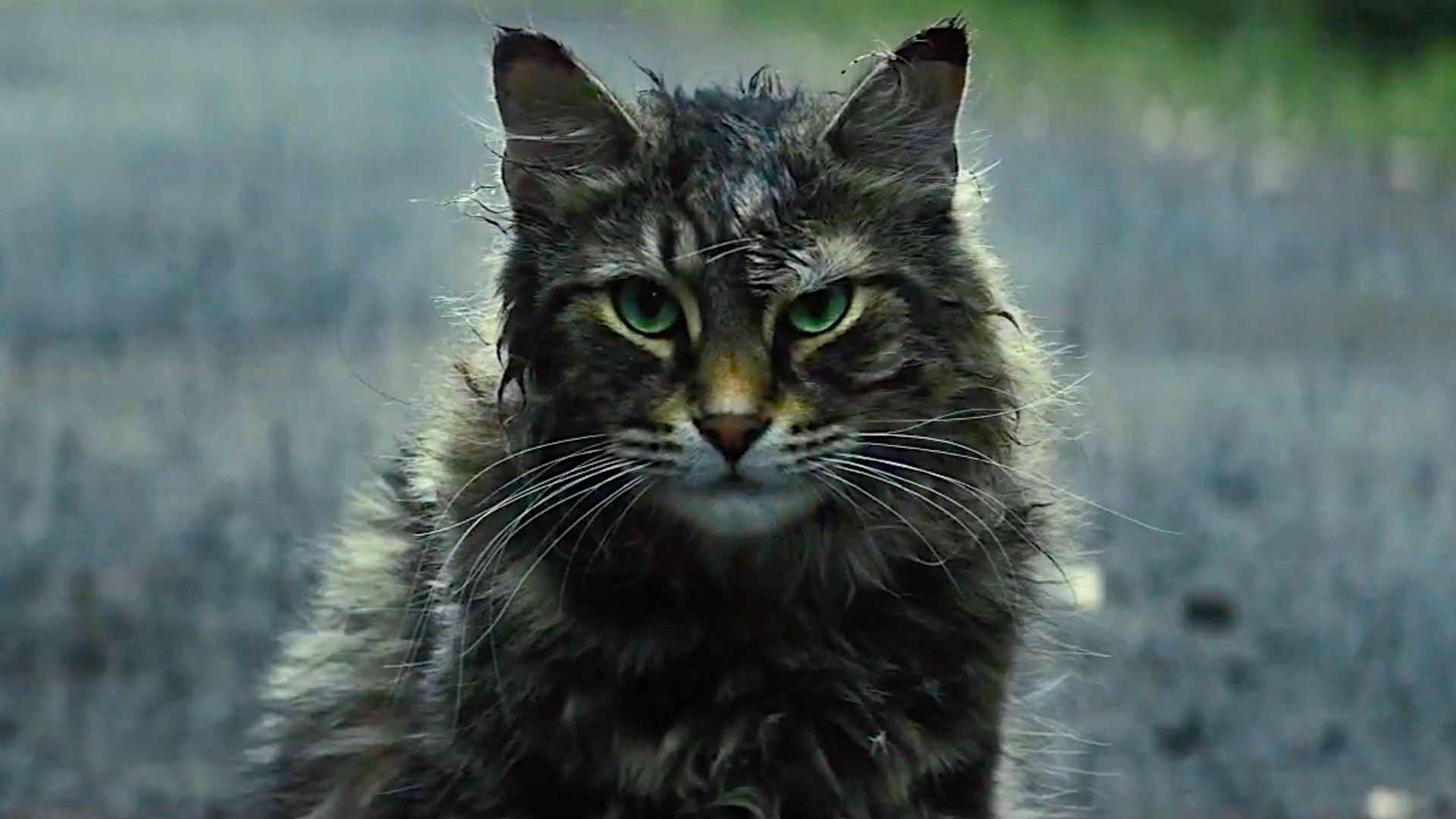 Pet Sematary with Jason Clarke - Official Trailer 2