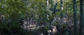 Simetierre Bande-annonce VO (Horreur 2019) Jason Clarke, John Lithgow