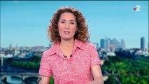 Affaire Benalla : le couple frappé par Alexandre Benalla jugé à Paris