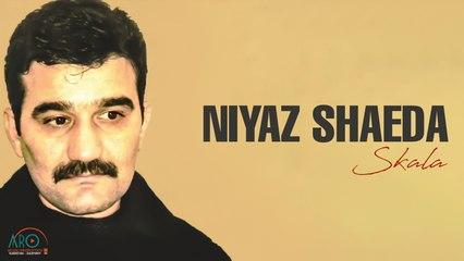 Niyaz Shaeda(نیاز شەیدا) - Dil Birin(دل برین)