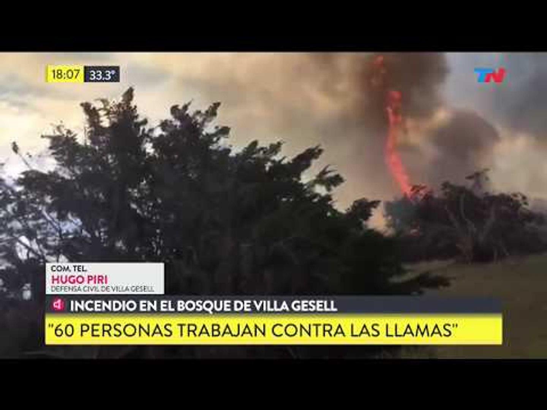Incendio en el bosque de Villa Gesell