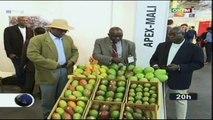 ORTM/Foire d'exposition des produits agricoles en Allemagne -  Le Mali y a pris part