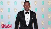 Mahershala Ali Sick Of Being Asked About Diversity