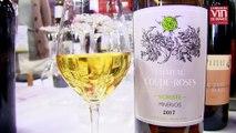 Coup de cœur pour un vin bio très frais du Minervois