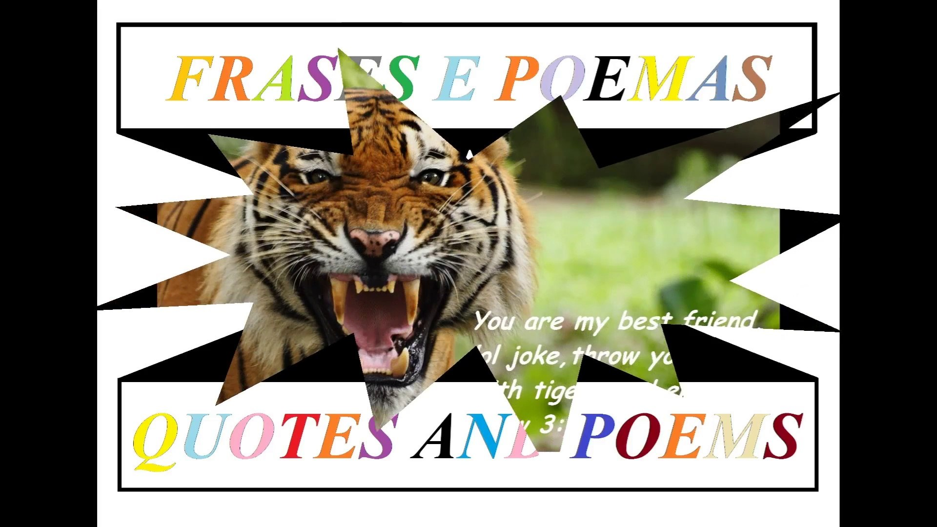 Your My Best Friend Lol Joke Jail With Tigers Quotes And Poems