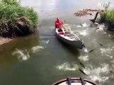 Des centaines de poissons se jettent dans son bateau... peche miraculeuse