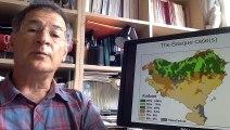 « La communication plurilingue dans le droit de l'UE : égalité d'accès, loyauté, identité », Joxerramon Bengoetxea Caballero, Professeur de philosophie du droit à l'université du Pays basque (communication pré-enregistrée et diffusée lors du colloque)