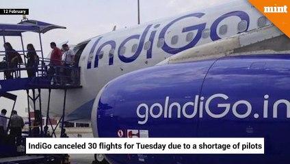 IndiGo cancels 30 flights due to shortage of pilots