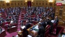 Privatisations : un sénateur LREM compare la coalition du Sénat à « l'arche de Noé »