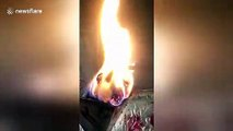 Bizarre video shows burning log that looks just like a dog
