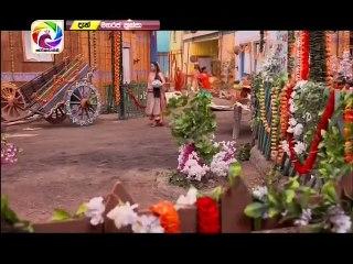 Maharaja Kansa 13/02/2019 - 195