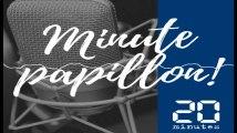 Minute Papillon! Flash info midi  - 15 février 2019