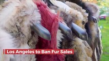 You Won't Be Buying Fur Coats In Los Angeles Or San Fran
