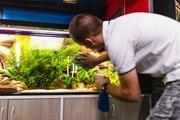 Les indispensables en aquariophilie