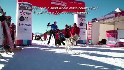 Episode 11 - Le Ski-Joëring ST