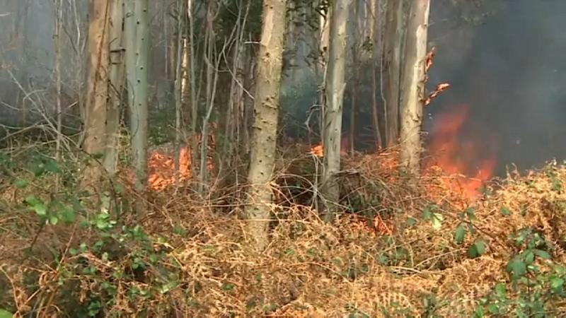 Las llamas devoran Cantabria
