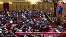 Le rendez-vous de l'information sénatoriale. - Sénat 360, 100% Questions d'actualité au Gouvernement (19/02/2019)