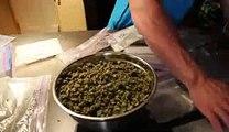 www.saveonweed.ca - Buy Weed Online