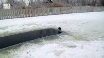donmuş gölde balık tutan kedi