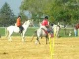 2 TASSES pony-games