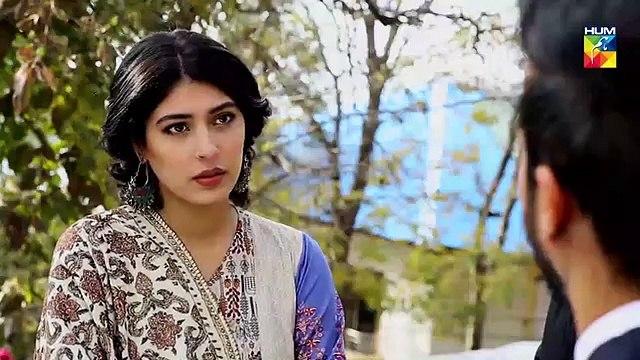 Tu Ishq Hai Epi 25 HUM TV Drama 20 February 2019