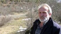 Yaban keçileri yerleşim yerlerine alıştı - ANTALYA
