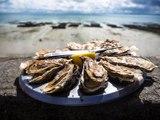 L'huître de saison