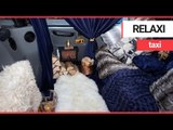 The world's cosiest taxi has been unveiled | SWNS TV