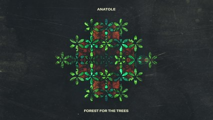 Anatole - Forest For The Trees