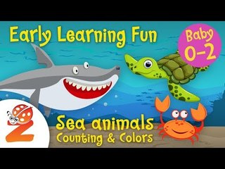 Early Learning Fun #5  Sea Animals 2 | Counting & Colors