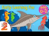 Early Learning Fun #7   Sea Animals | Part 3 | Counting & Colors