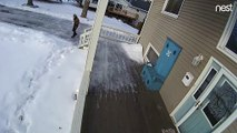Security Camera Sees Sister-in-Law Slipping
