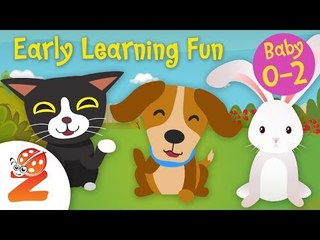 Early Learning Fun #6 | Pet Animals   Counting & Colors | Educational