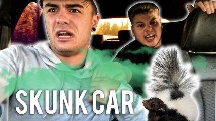 PUT A SKUNK IN MY BROS CAR