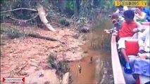 Des touristes nourrissent un anaconda sauvage... Terrifiant