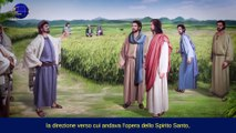 When You Behold the Spiritual Body of Jesus Will Be When God Has Made Anew Heaven and Earth