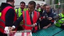 Douanes : des saisies massive de stupéfiants