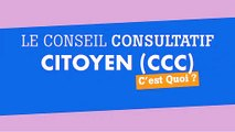 Le Cap Citoyen Réunion : donner votre avis