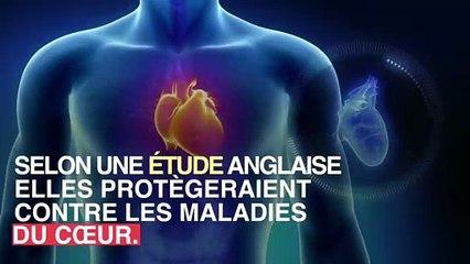 _Boire_du_jus_de_myrtilles_réduirait_le_risque_d'infarctus_