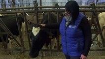 Une initiative locale pour un meilleur revenu laitier