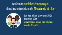 Le Comité social et économique dans les entreprises de 50 salariés et plus