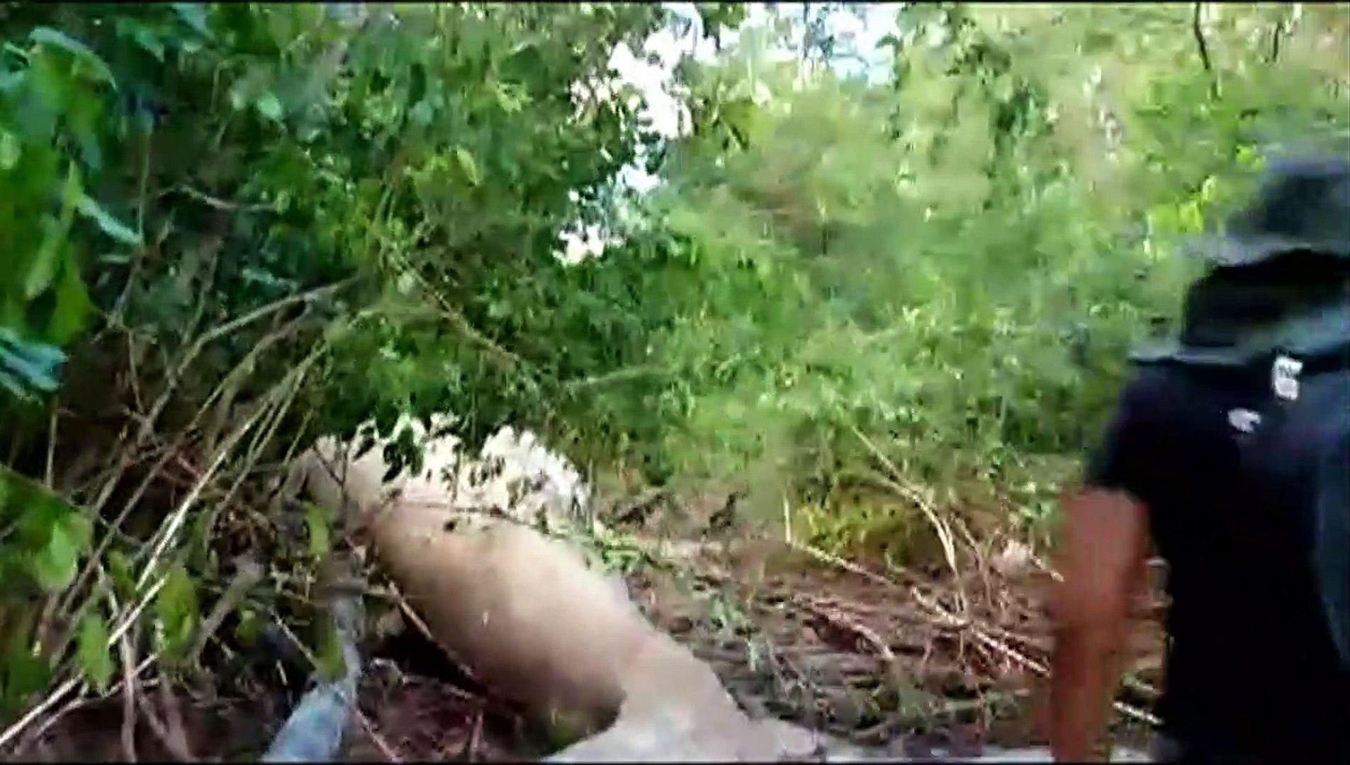 Mistério na Ilha de Marajó