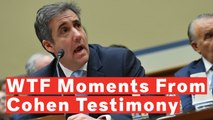 7 Most 'WTF' Moments From Cohen Hearing