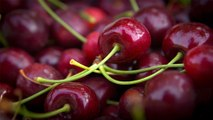 35 - Sweet cherries from the Okanagan Valley, exported to more than 20 countries